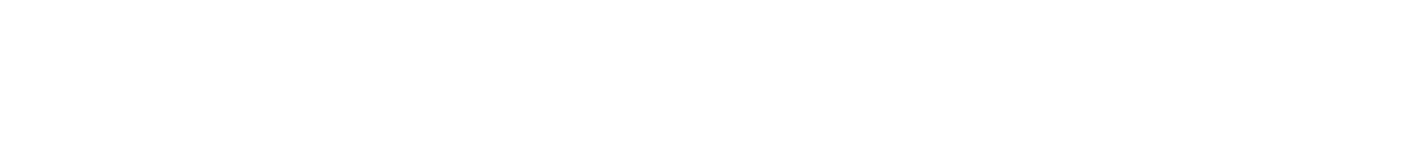 Horizontal logo white